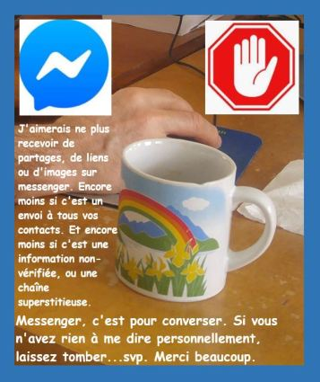 Capture stop partages messenger